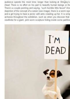 AQNB.COM, Hayward Gallery art review