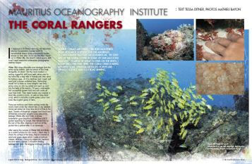 Sports Diving Magazine Australia Coral Conservation