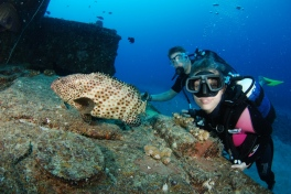 Underwater Research for The Coral Rangers
